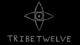 TribeTwelve